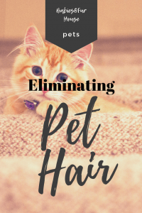 The Best Ways To Get Rid Of  Pet Hair In The House. Easy Eliminating Of Pet Hair