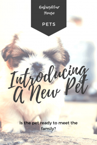 Introducing A New Pet To The Family #newpet #newpuppy #newkitten #newfamily