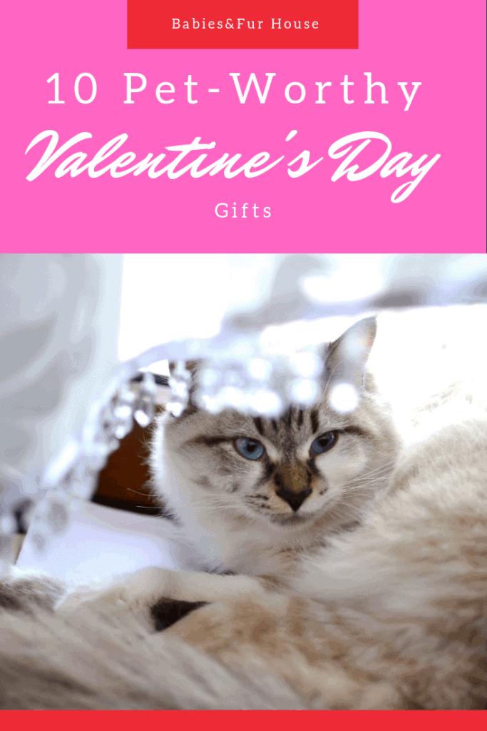 Pet Valentine's Day Gifts #Valentinesdaypets #petgifts