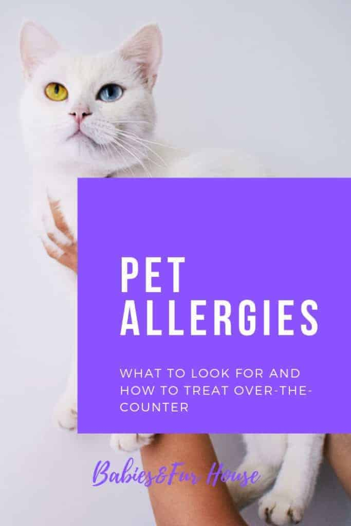 Pet Allergies: Over The Counter Medications #petallergies #dogallergies #petmeds