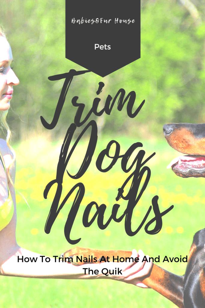 How To Trim Dog Nails #dognails #trimdognailsathome #trimdognails