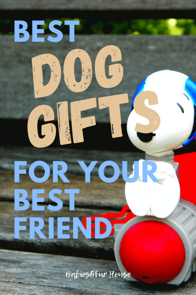 Best Dog Gifts For Your Best Friend