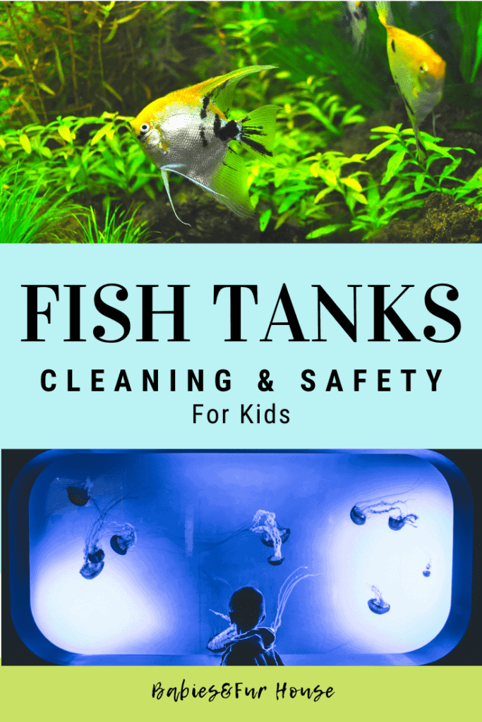 Fish Tanks: Cleaning & Safety For Kids