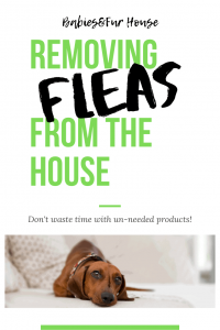 The Best Way To Get Rid Of Fleas In The House #fleas #cleaning #pets