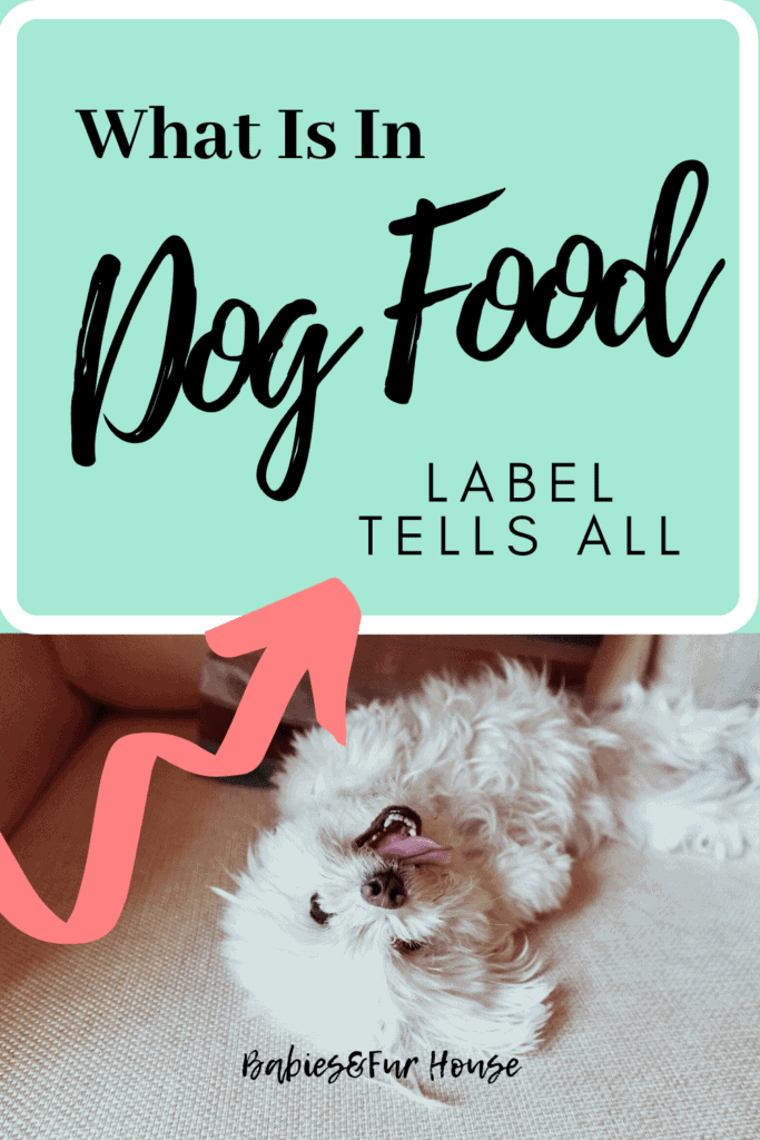 What Is In Dog Food: Label Tells All #dogfood #bestdogfood #petfood