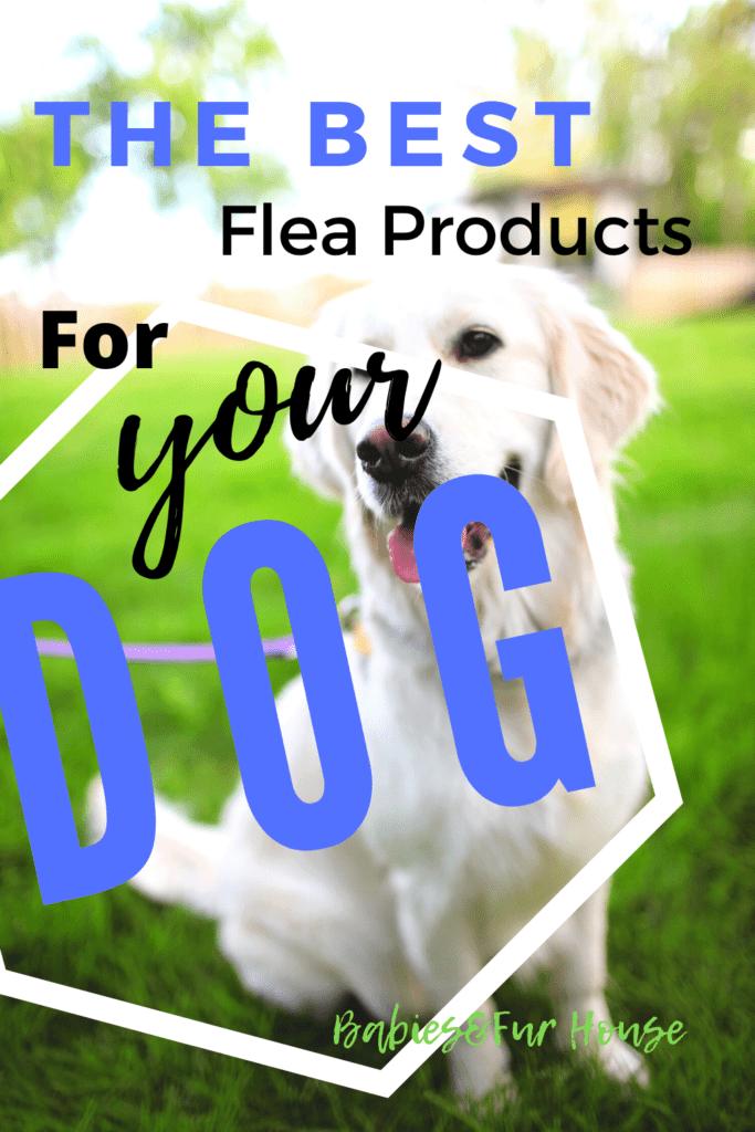 The Best Flea Products For Your Dog #fleas #flea #fleaproblem #fleasondogs