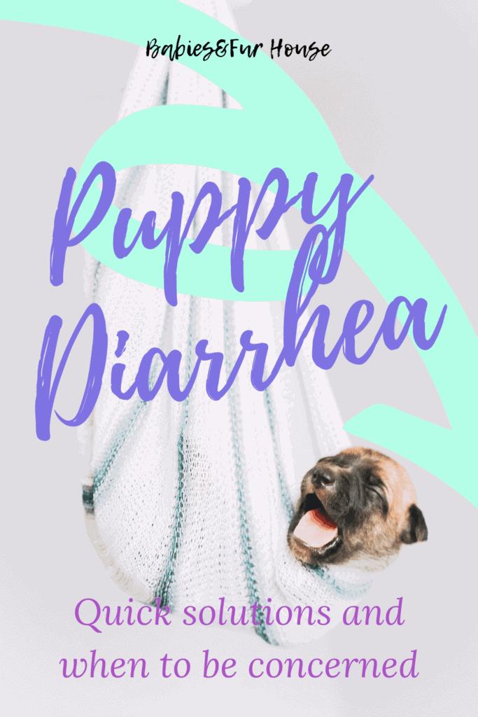 Diarrhea In Puppies #puppydiarrhea #sickpuppy #diarrheainpuppies