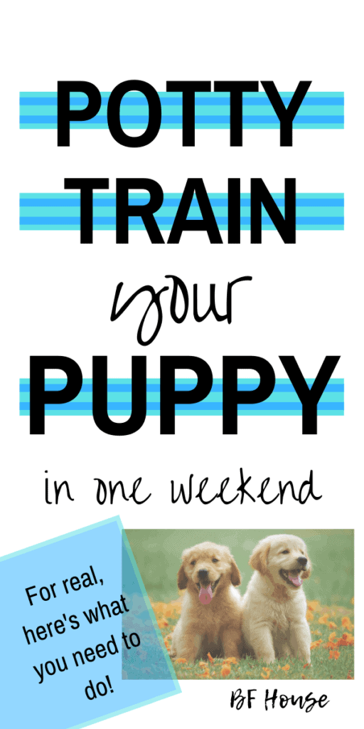 Puppy Potty Training: 1 Weekend Lesson. Get It Right In One Weekend #puppy #puppypottytraining