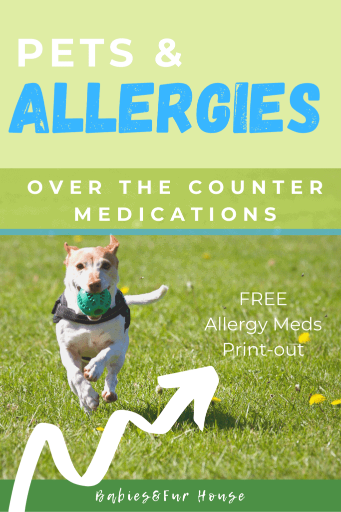 Pet Allergies. Over the counter medications for dog allergies