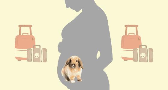 pregnancy week 35
