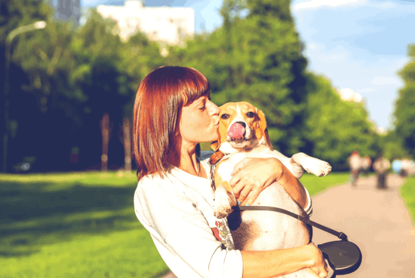 The Best Dog Gifts For Your Best Friend